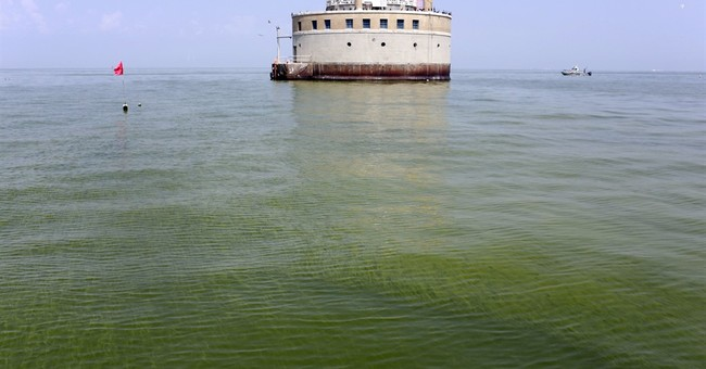 Algal blooms lead to 'impaired' designation for Lake Erie