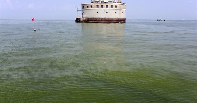 Algal blooms lead to 'impaired' designation for Lake Erie
