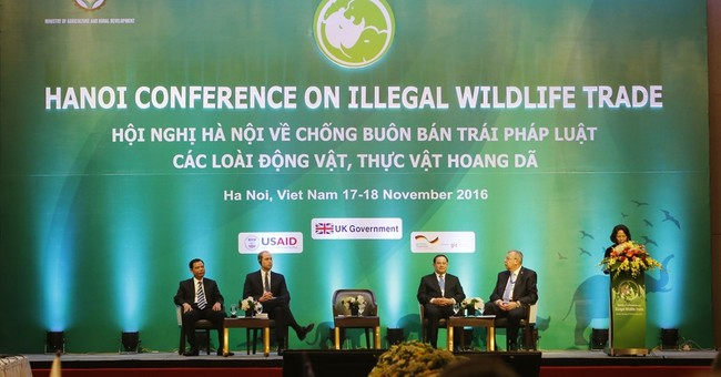 Prince William: We're still step behind wildlife traffickers