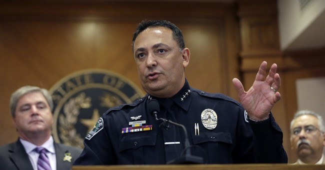 Houston gets new police chief after community criticism