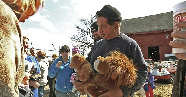 Judge orders return of tigers, other seized exotic animals