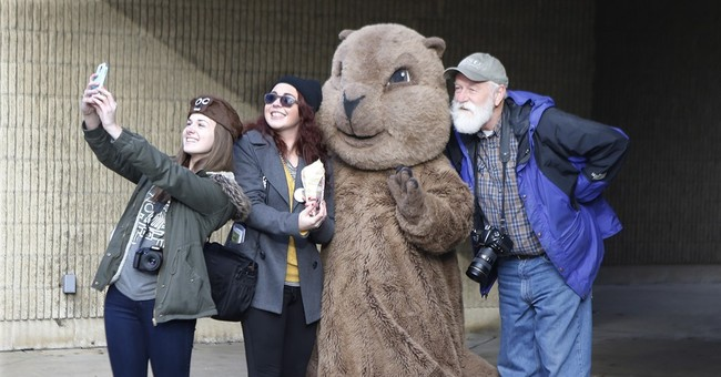 Pennsylvania's Punxsutawney Phil 'predicts' early spring