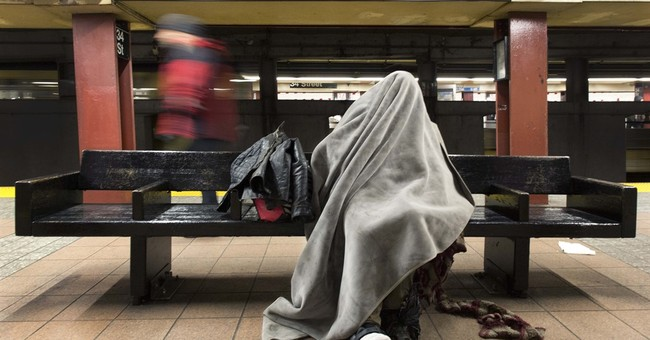 Scientists map bedbug genome, follow pest through NYC subway