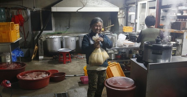 Korean woman raises 200 dogs saved from streets, restaurants