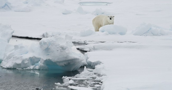 Svalbard sees 'shocking' temperatures near freezing point
