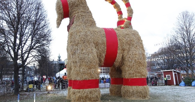 Swedish Christmas goat burns on 50th anniversary