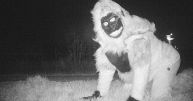 Wildlife cameras capture photos of jokers dressed as lions