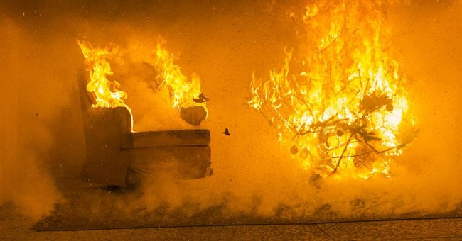 Crispy Christmas trees: Staged fire shows potential risks