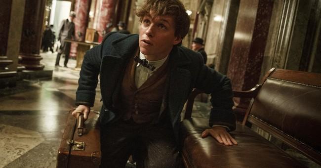 Box Office Top 20: 'Moana,' 'Fantastic Beasts' rule again