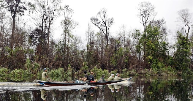 Indonesia takes new step to combat loss of forests, fires