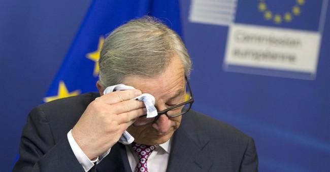 EU chief: 1 type of European chopper, tank to stop waste