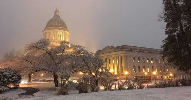 Freezing rain downs trees, powerlines in Portland
