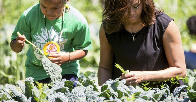 Next on Michelle Obama's journey: Figuring out next steps