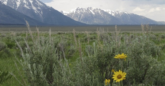 Sold: Pristine views in Grand Teton National Park for $46M