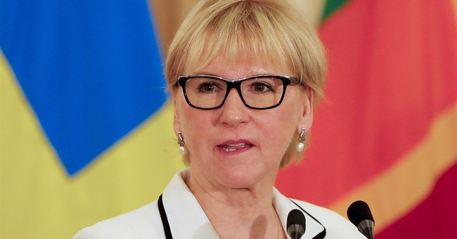 Israeli officials will not meet visiting Swedish FM