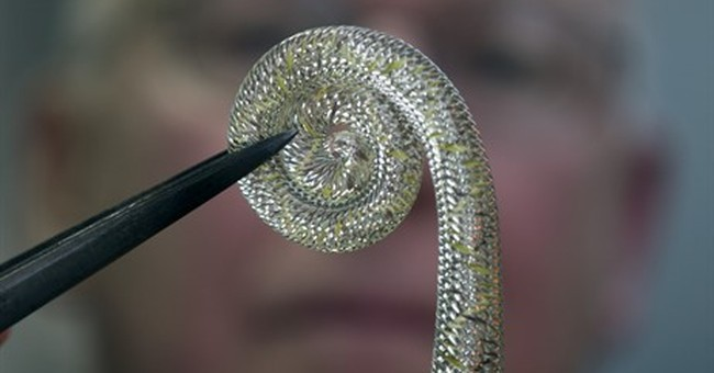 Glass expert digs into secrets of historic Venetian process