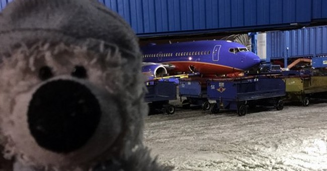 Teddy bear takes Detroit airport adventure after being found