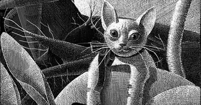 Illustrators win gold medals for book, editorial art