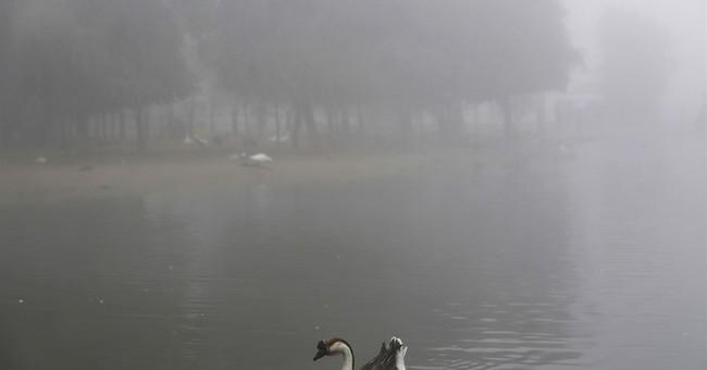 Fog engulfs parts of United Arab Emirates, delaying flights