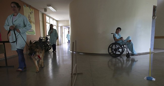 AP PHOTOS: Dogs provide therapy in a Brazilian hospital