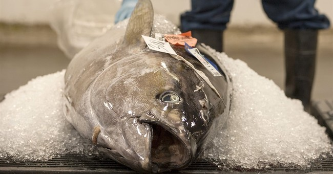 US issuing new rules to curb illegal fishing, seafood fraud