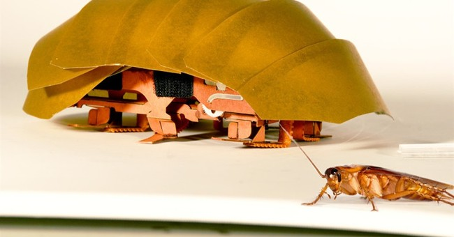 An icky new hero: Roach-like robots may help in disasters