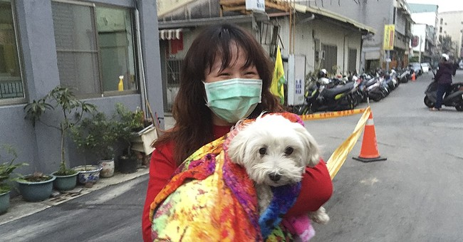 Developer detained, dog rescued in Taiwan apartment collapse