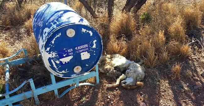Water stations along Mexico border vandalized, shot