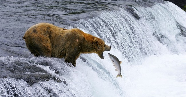 IMAX film 'National Parks Adventure' celebrates parks