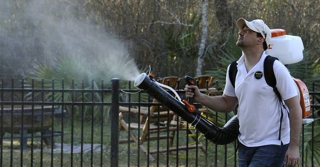 Zika virus has phones ringing at pest control, travel firms