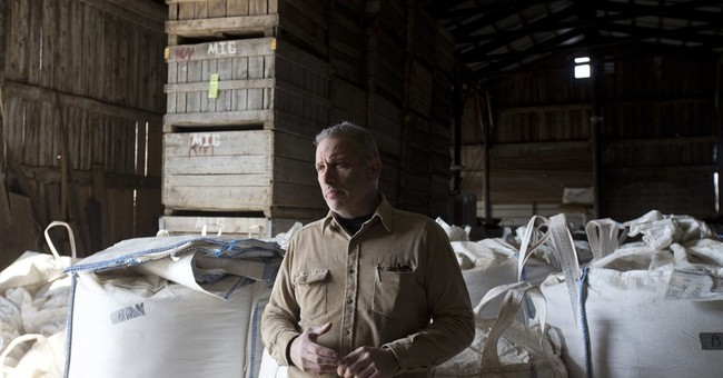 Craft beer boom spurs demand for close-to-home barley malt