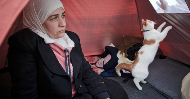 Palestinian Syrian relives parents' fate in becoming refugee