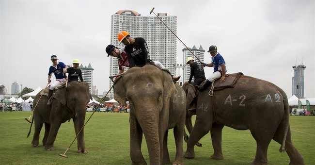 Image of Asia: Contesting an elephant polo match in Thailand