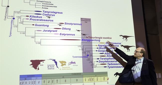 Fossil find sheds light on how evolution produced T. rex