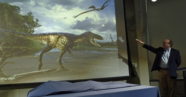 Fossil find sheds light on how evolution produced T. rex