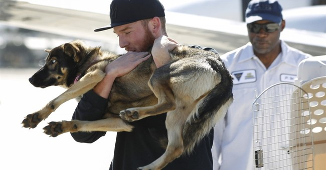 Doggone good tale: Pup found 5 weeks after falling overboard