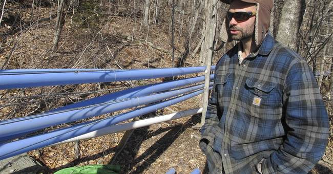 Big Maple: Demand for new sweeteners brings boom in Vermont