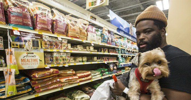 Americans pony up record $60B keeping pets healthy, happy