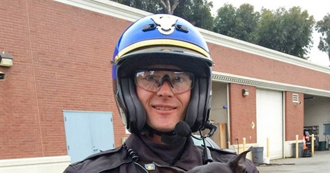 Chihuahua leads police on chase across Bay Bridge