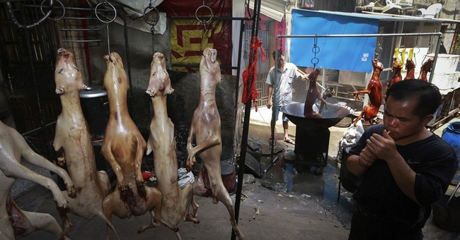 Animal rights activists target China dog meat festival