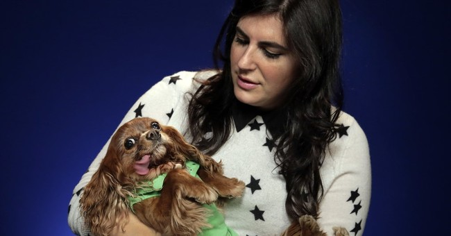Instagram diva Toast the rescue dog stars in new photo book