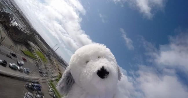 High-altitude balloon takes stuffed dog Sam to stratosphere