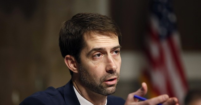 Tom Cotton's Fiery Exchange With Schumer Over Stalled Nominations