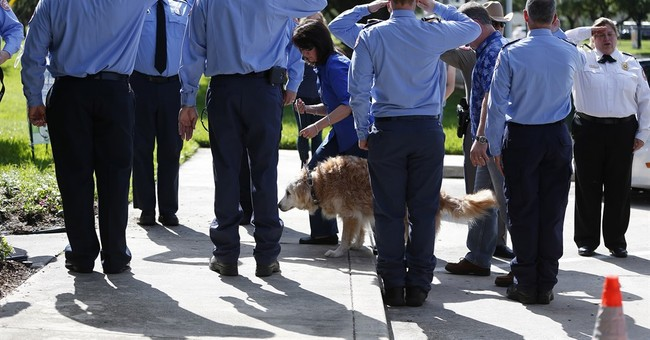 Last Known Living 9/11 Search and Rescue Dog Dies
