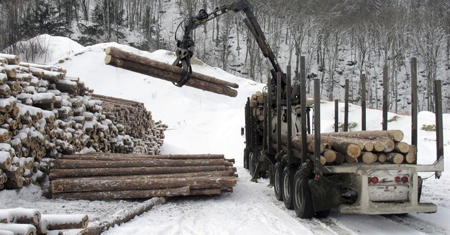 Don't Overlook America's Loggers
