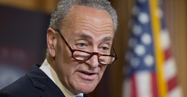 Chuck Schumer Elected as Senate Minority Leader