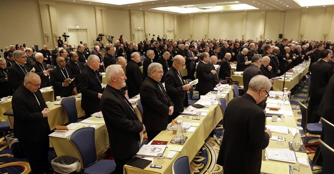 US Bishops 'Disappointed' as Vatican Halts Their Attempts to Address Sex Abuse Scandal