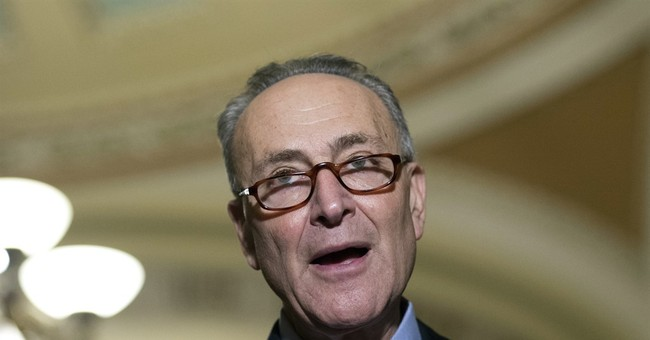 Schumer Backs Effort That Rejects the Anti-Israel UN Resolution