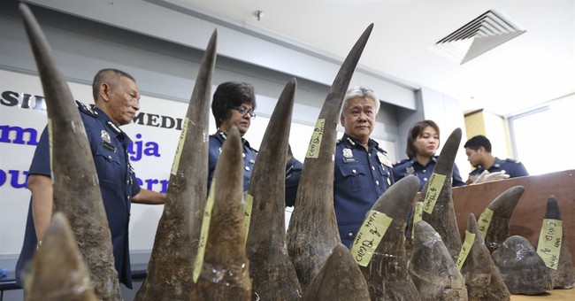 Malaysia seizes 18 rhino horns from Mozambique