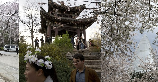 AP PHOTOS: Cherry blossoms lure admirers around north Asia